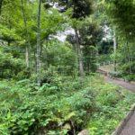 瀬田四緑地